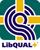 libqual icon